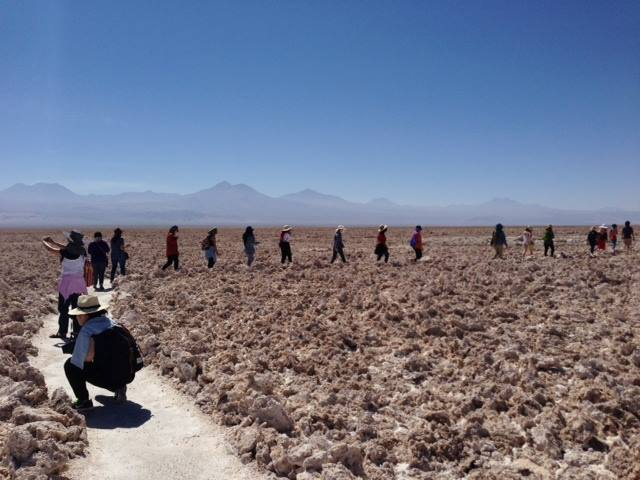 Wondering who is trekking vigorously through the Atacama Dessert in Chile? Our fierce Scotties, of course!